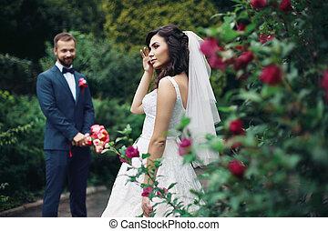 brunette, rose, palefrenier, mariée, buisson, poser, fond, magnifique, sexy