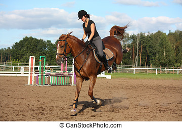 Brunette woman riding playful chestnut horse - Brunette...