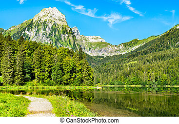 Brunnelistock mountain at Obersee lake in Swiss Alps