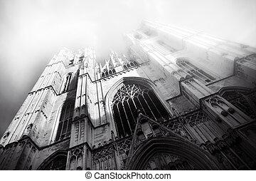 brusels, gothique, bruxelles, belgique, cathédrale, beau