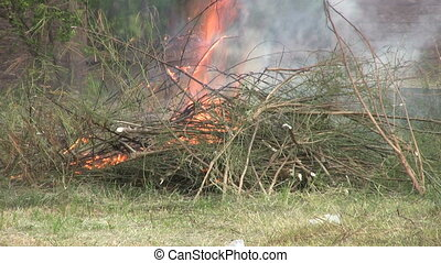 Brush Fire Burns Out Of Control - A brush fire begins to ...