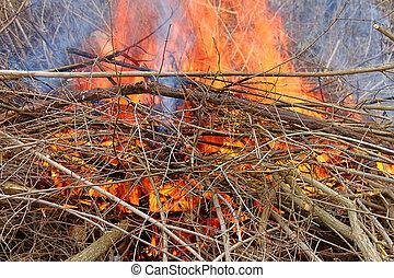 Brush Fire in Illinois