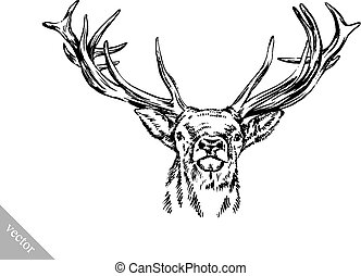 brush painting ink draw vector deer illustration