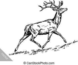 brush painting ink draw vector deer illustration - black and...