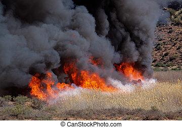 Fierce brushfire with flames and black smoke
