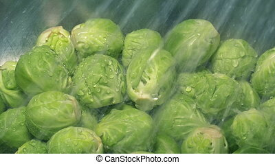 Closeup of brussels sprouts washing clean in the sink