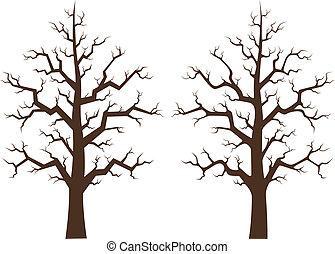 brutta copia, albero acero, due, illustrazione