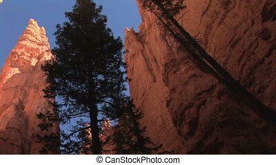 bryce, mur, parc national, canyon, rue