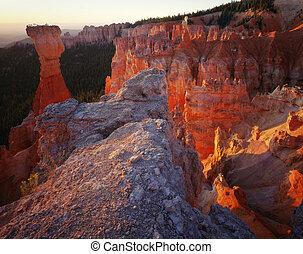 bryce, uralkodik, liget, nemzeti, utah, napkelte, kanyon
