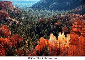 bryce, usa, utah, południowy, kanion, sceniczny prospekt