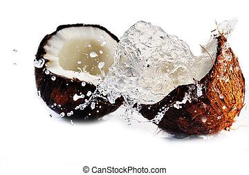 bryzgając, pęknięty, orzech kokosowy
