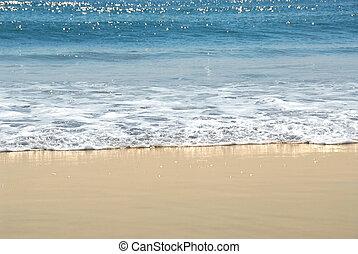 brzeg, ocean