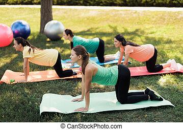 brzemienność, yoga., trzy, brzemienne kobiety, czyn, yoga, wykonuje, w parku