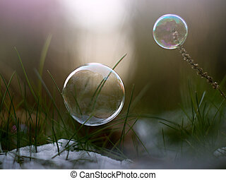 buble - soap bubble in nature in winter