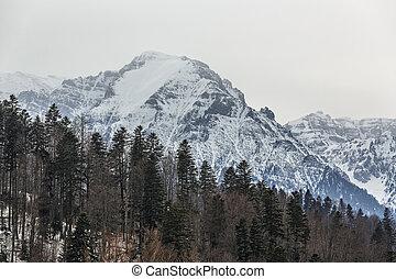Bucegi mountains winter landscape