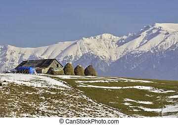 bucegi, paisaje, montañoso, viejo, rumano, granja, almiares, macizo, pacífico, rural, tradicional, granero