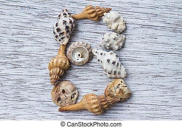 buchstabe b, gemacht, von, seashell
