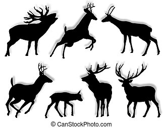 Buch silhouettes in different poses and attitudes