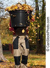 Bucket full of autumnal leaves