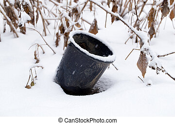 bucket in the snow
