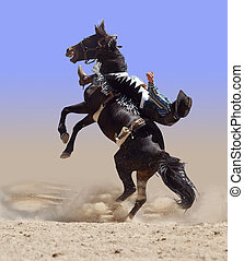 bucking, rodeo, cavallo, con, cavaliere