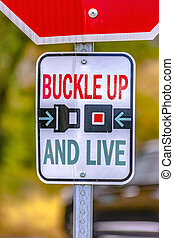 Buckle Up And Live road sign on a sunny street