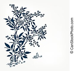 buckthorn honeysuckle vector ink illustration sketch japanese chinese style line art design