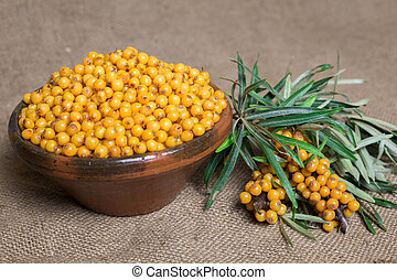 Buckthorn, Sea buckthorn berries in a bowl