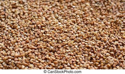 Buckwheat grain textured background slow review close-up -...