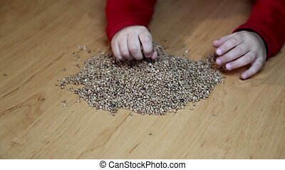 buckwheat in hand
