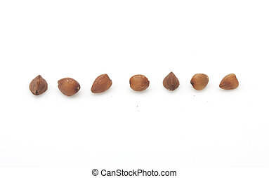 buckwheat on white background. close