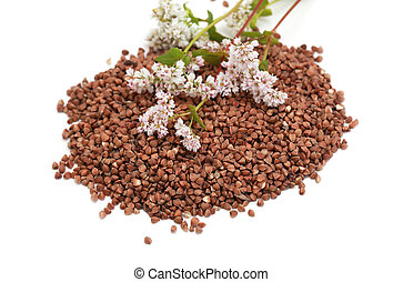 buckwheat grain and flowers on white background