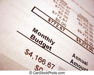 budżet, 002