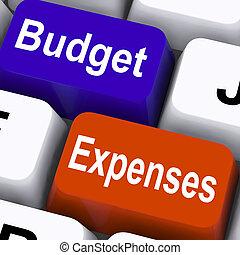 budżet, wydatki, klawiatura, pokaz, towarzystwo, księgowość, i, asygnowanie
