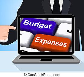 budżet, wydatki, klawiatura, wystawy, towarzystwo, księgowość, i, asygnowanie