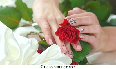 Bud of red rose and manicured hands. Young woman hands with...