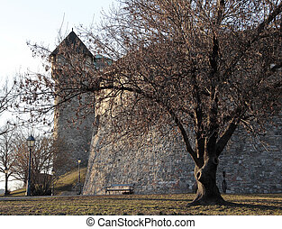 buda castle 1