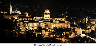 Buda castle at night - Buda castle in Budapest at night