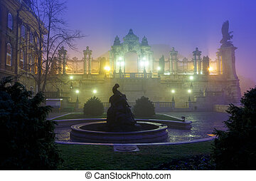 Buda Castle, Budapest - Buda castle at foggy morning,...