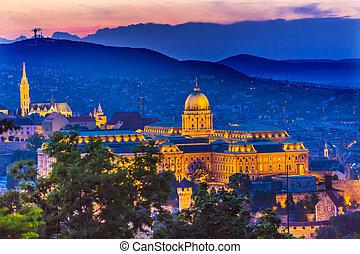 Buda Palace Matthias Church Budapest Hungary