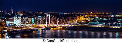 Aerial view of Budapest, Hungary at night. Illuminated Liberty bridge