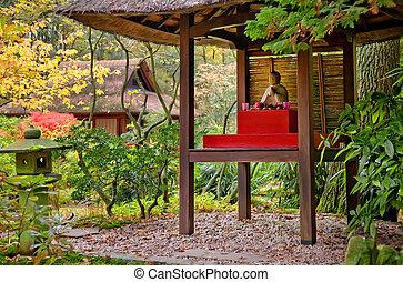 Budda tempel in park - Japanese park by seasonal autumn time