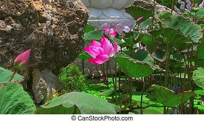 Buddha and lotus on blue sky background