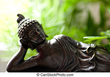 buddha - buddh