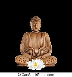 Buddha Devotion