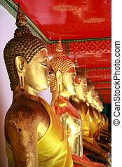 buddha, estatuas, en, wat po, bangkok