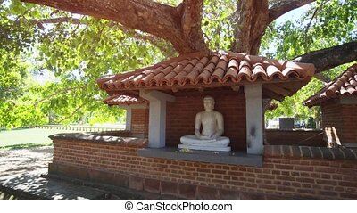 Marble sculpture of the Buddha on an outdoor altar, beneath a mature, tropical tree in Tissamaharama, Sri Lanka.