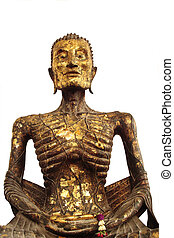 Buddha Statue of torture close up