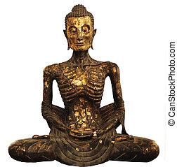 Buddha Statue of torture