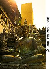Buddha statues in sunset lights